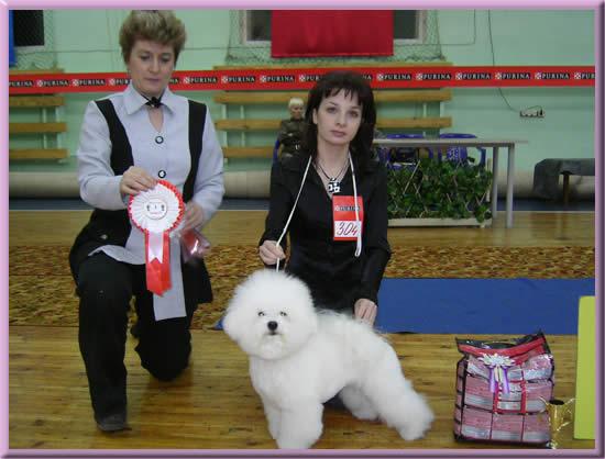 http://jaroslavas-bichon.narod.ru/novosti/7.jpg
